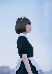 Air Doll (K�ki ningy�)