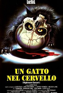 A Cat in the Brain (Un gatto nel cervello) (Nightmare Concert)