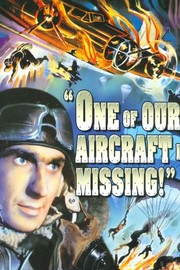 One of Our Aircraft Is Missing