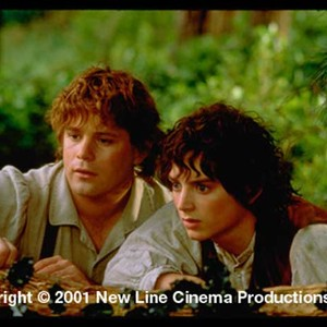 8739a4c6af9 The Lord of the Rings  The Fellowship of the Ring (2001) - Rotten ...