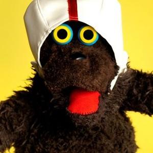 Warren the Ape