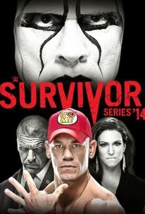 WWE: Survivor Series 2014