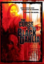The Curse of the Black Dahlia
