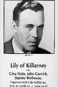 Lily of Killarney