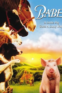 Image result for babe movie