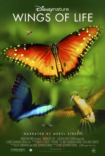 Disneynature Wings of Life