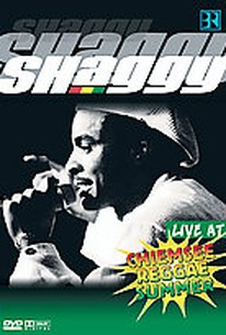 Shaggy - Live at Chiemsee Reggae Summer