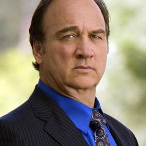 Jim Belushi as Nick Morelli