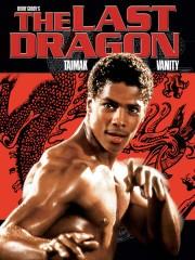 The Last Dragon
