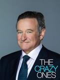 The Crazy Ones: Season 1