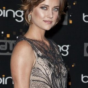 Jessica Stroup Rotten Tomatoes