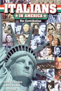 Our Contributions: The Italians in America