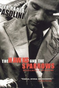 The Hawks and the Sparrows (Uccellacci e uccellini)