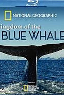 Kingdom of the Blue Whale