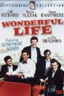 Wonderful Life (Swingers' Paradise)