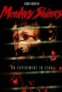 Monkey Shines: An Experiment in Fear