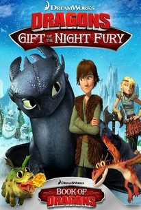 Dragons: Gift Of The Night Fury / Book Of Dragons
