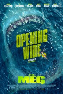 The Meg 2018 Rotten Tomatoes