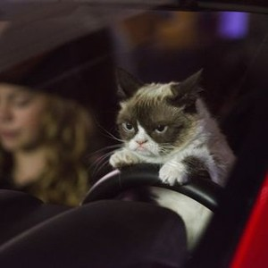 Grumpy Cat's Worst Christmas Ever (2014) - Rotten Tomatoes