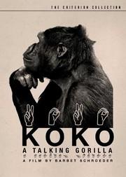 Koko, le gorille qui parle (Koko, a Talking Gorilla)