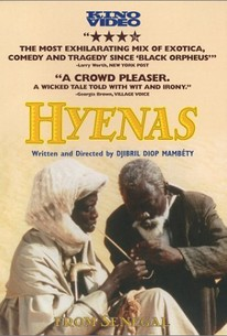 Hyènes (Hyenas)