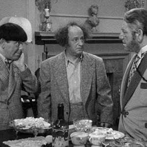 The Three Stooges Season 20 Rotten Tomatoes