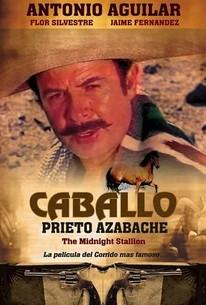 Caballo Prieto Azabache