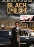Black Limousine (The Land of the Astronauts)