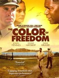 Color of Freedom