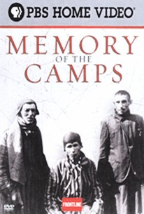 German Concentration Camps Factual Survey (Memory of the Camps)