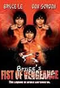 Bruce's Fists of Vengeance