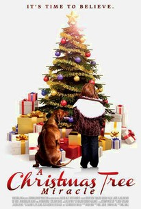 A Christmas Tree Miracle (2013) - Rotten Tomatoes