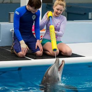 dolphin tale 1 free movie online