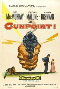 At Gunpoint (Gunpoint!)