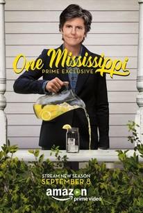 One Mississippi: Season 2 - Rotten Tomatoes