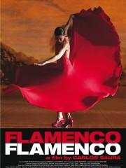 Flamenco, Flamenco