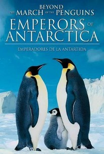 La Marcha de los Pinguinos 2 (Beyond March of the Penguins: Emperors of Antarctica)