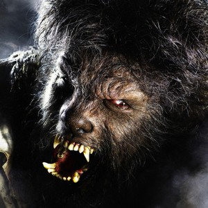 Image result for wolfman