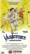 Vasectomy: A Delicate Matter