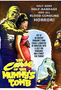 The Curse Of The Mummy S Tomb 1964 Rotten Tomatoes I'm running out of words to describe that anime, adorable and cute are definitely not enough :d. the curse of the mummy s tomb 1964