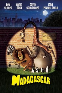 Madagascar Movie Quotes Rotten Tomatoes