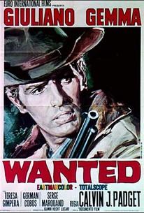 Wanted, le Recherche