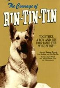 The Courage of Rin Tin Tin (The Challenge of Rin Tin Tin)
