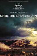 Until The Birds Return (En Attendant Les Hirondelles)