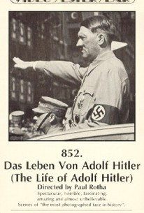 the life story of adolf hitler Lets go through the history of hitler who changed our history made in regards of my history/civics project leave a question, comment or video response.