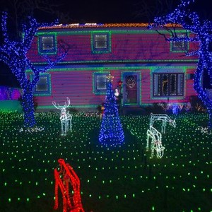 The Great Christmas Light Fight - Rotten Tomatoes