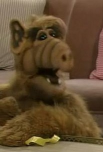 ALF Reviews: Hungry Like the Wolf (season 4, episode 22
