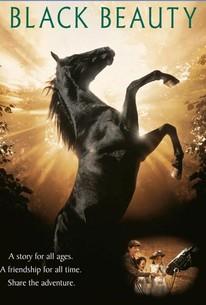 Black Beauty (1994) - Rotten Tomatoes