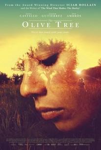 The Olive Tree (El olivo)