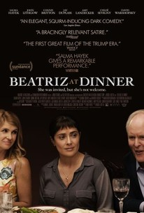 Beatriz At Dinner 2017 Rotten Tomatoes